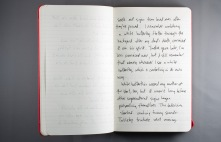 Journal Reflections: Brian Francis