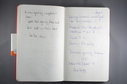 Journal Reflections: Robert Rotenberg
