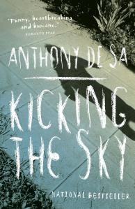 Book Cover_Kicking the sky